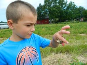 Of course Charlie found a frog