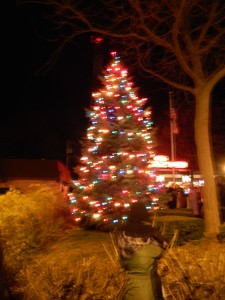 The town tree. Again, blurry.